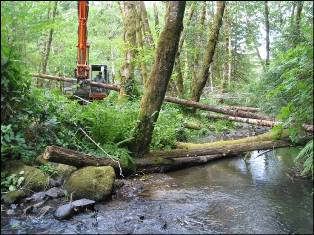 Placing large wood on Ferguson Creek at Holzbauer's