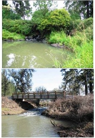 bridge replaced culvert_subwatershed image