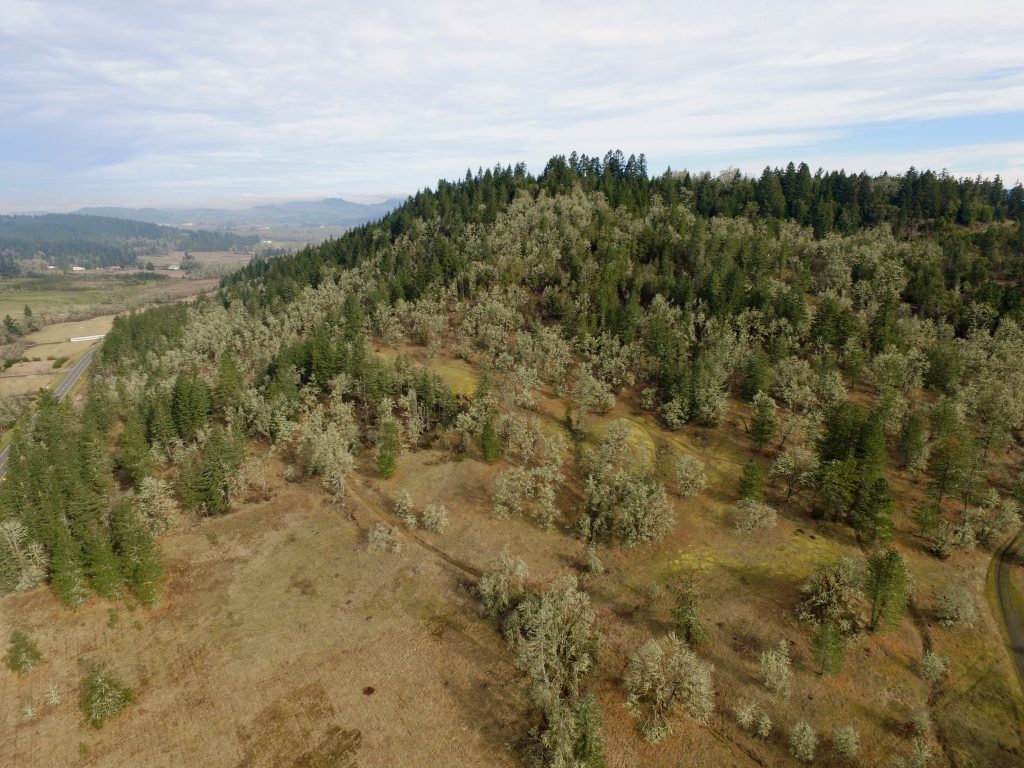 UAV View Andrew Reasoner